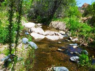 wAZT-2016 day19-3  Sycamore Creek.jpg (635469 bytes)