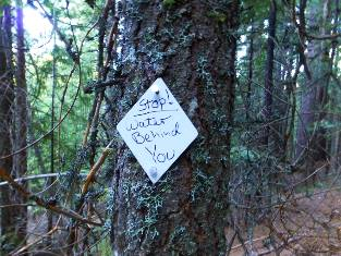 Pacific Crest Trail (PCT): Section Hike: Pygmy PCT 2016