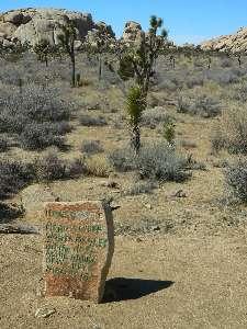 wjt2011-day7-1-tombstone.jpg (320154 bytes)