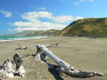 wlc11-day1-3-Matolle-Beach.jpg (336800 bytes)