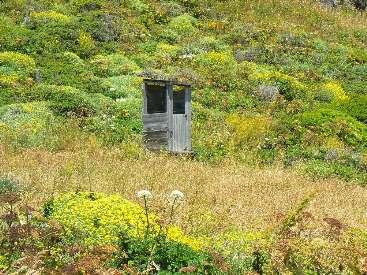 wlc11-scenic-toilet-day1-3-N-of-punta-gorda.jpg (728886 bytes)