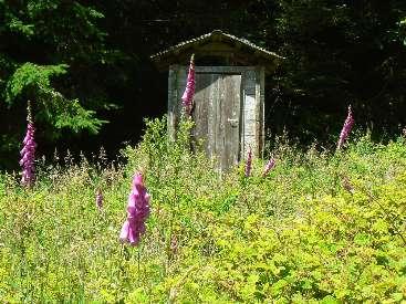 wlc11-scenic-toilet-day5-5-wheeler.jpg (559318 bytes)