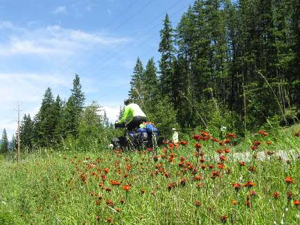wselkirk-bike-day4-15  flower road.jpg (519913 bytes)