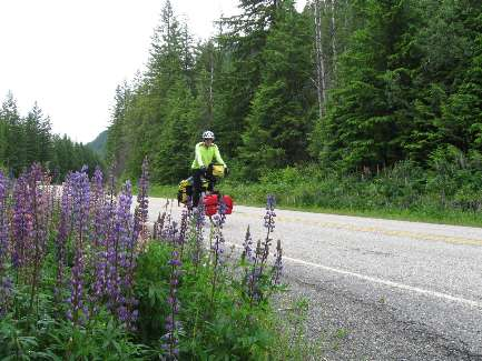 wselkirk-bike-day5-7  all that rain = flowers.jpg (478924 bytes)