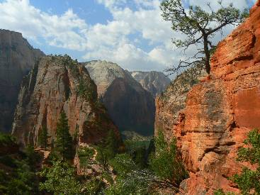 wzion2012-day5-12   Angels Landing.jpg (400065 bytes)